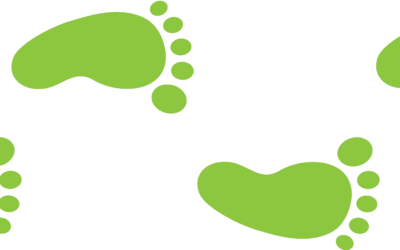 Scheduling Staff Correctly by Leveraging Foot Traffic Data